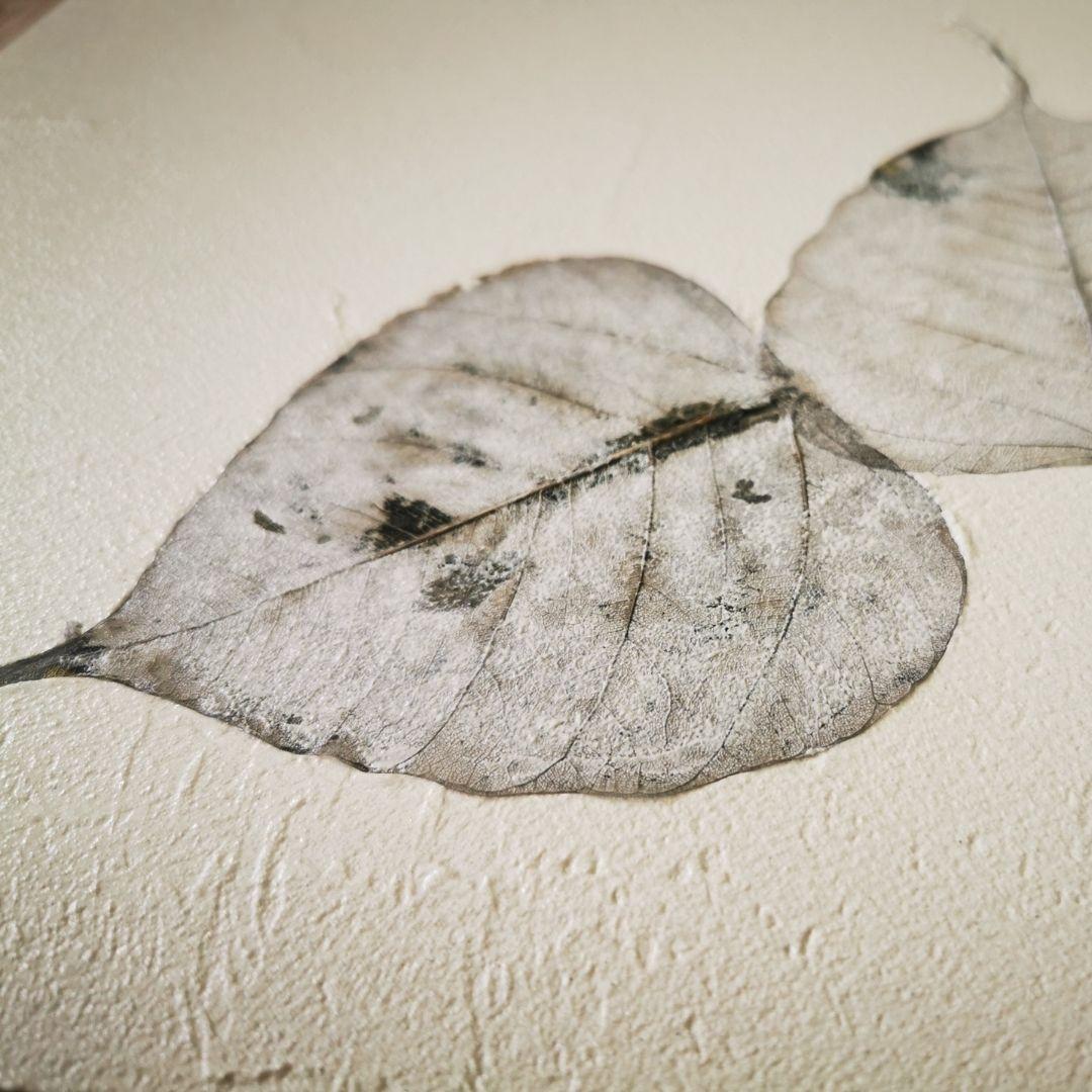 Texture con applicazione di foglie stabilizzate   Ecoover®